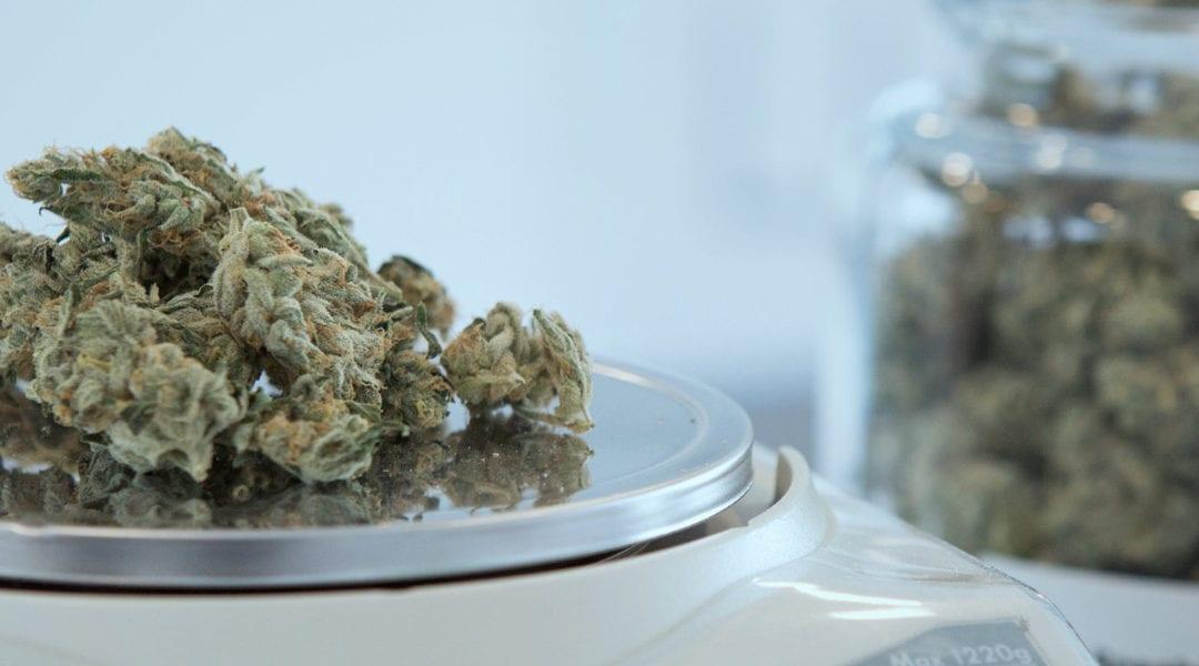 Medical marijuana on scale