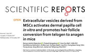 Extracellular vesicles derived from MSCs activates dermal papilla cell in vitro and promotes hair follicle conversion from telogen to anagen in mice Innate Healthcare