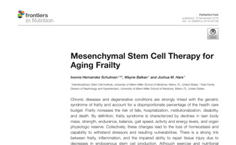 Frailty and MSC Therapy Innate Healthcare