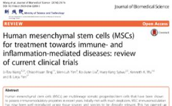 Human mesenchymal stem cells (MSCs) for treatment towards immune- and inflammation-mediated diseases- review of current clinical trials Innate Healthcare