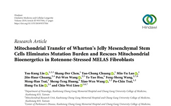 Mitochondrial Transfer of Wharton's Jelly Mesenchymal Stem Cells Eliminates Mutation Burden and Rescues Mitochondrial Bioenergetics in Rotenone-Stressed MELAS Fibroblasts Innate Healthcare
