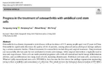 Progress in the treatment of osteoarthritis with umbilical cord stem cells Innate Healthcare