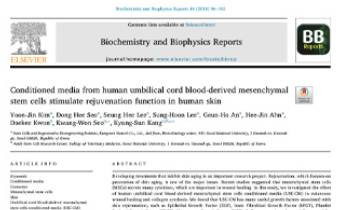 Skin and MSCs Conditioned media from human umbilical cord blood-derived mesenchymal stem cells stimulate rejuvenation function in human skin Innate Healthcare
