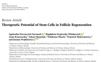 Therapeutic Potential of Stem Cells in Follicle Regeneration Innate Healthcare