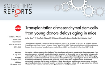 Transplantation of mesenchymal stem cells from young donors delays aging in mice Innate Healthcare